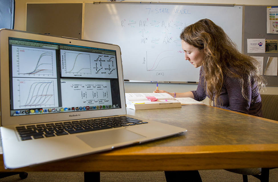 Josie Bircher '16 and a laptop displaying mathematical modeling