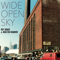 Cover of Wide Open Sky