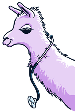 Illustration of a llama with a stethoscope