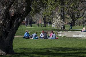 Sociology class outside on central campus