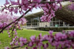 Campus in spring outside of Burling Library