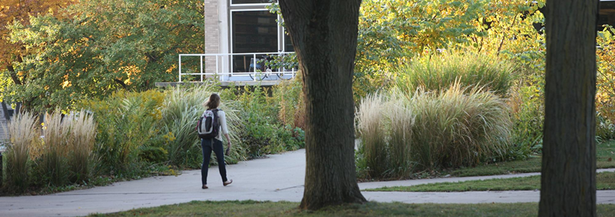 Student walks up the pathway to Burling Library