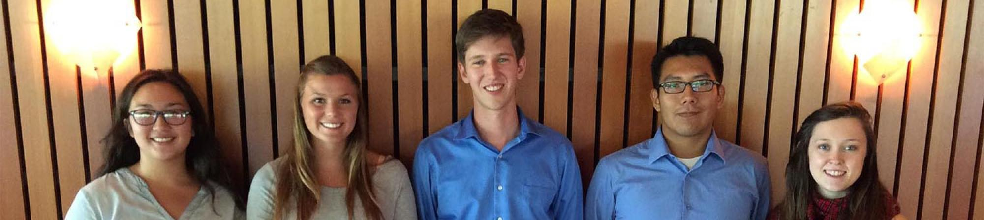 Rosenfield Program 2015 interns group portrait