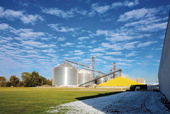 Sunny scene shows large corn silos with mound of golden corn under blue skies and fluffy clouds